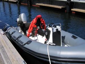 Mercury - Workboat