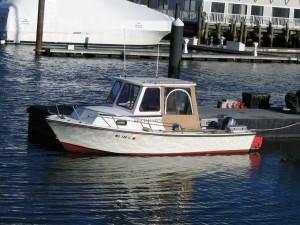 Apollo - Workboat